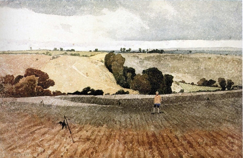 A ploughed filed in autumn